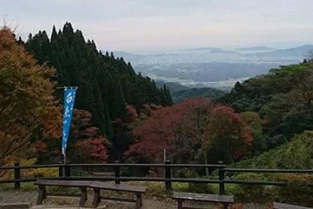 shiraito10