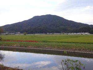 糸島 ギフト