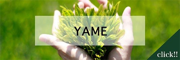 jititai_yame