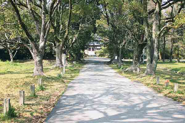 お寺にこんなに長い参道があるのは珍しいそうです。