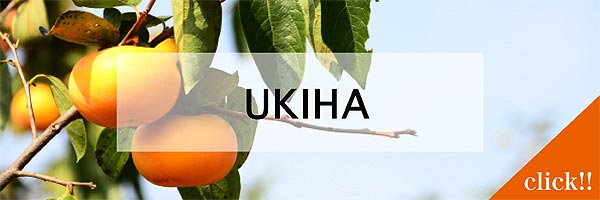 jititai_ukiha