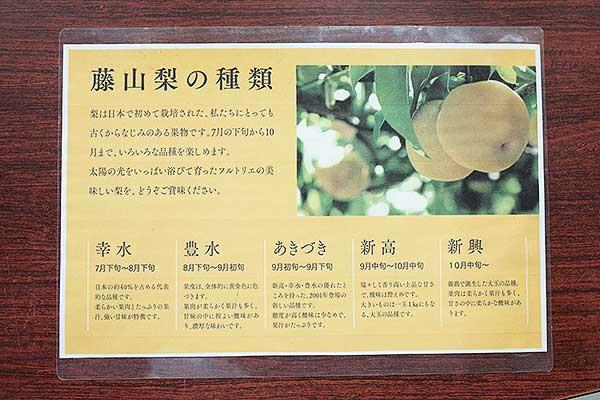 梨の種類も多く栽培されているので、季節によって違い、こんなに楽しめるんです。