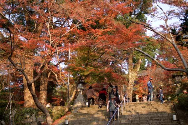 竃門神社の紅葉スポットはたくさん