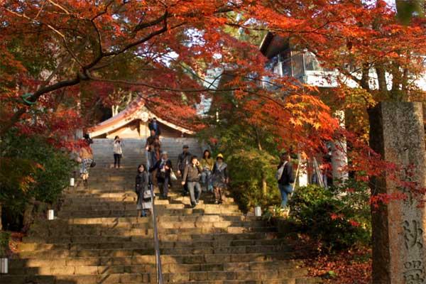 竃門神社の本殿が少し。紅葉に囲まれています。