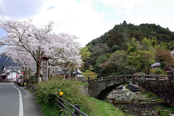 秋月桜の観光名所目鏡橋02