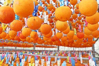 香春町のあま干し柿は特産品
