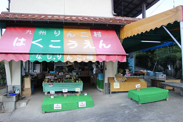 果樹園の隣には、様々な品種のりんごや梨が売っています