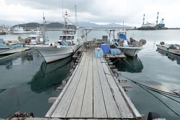 糸島・岐志漁港