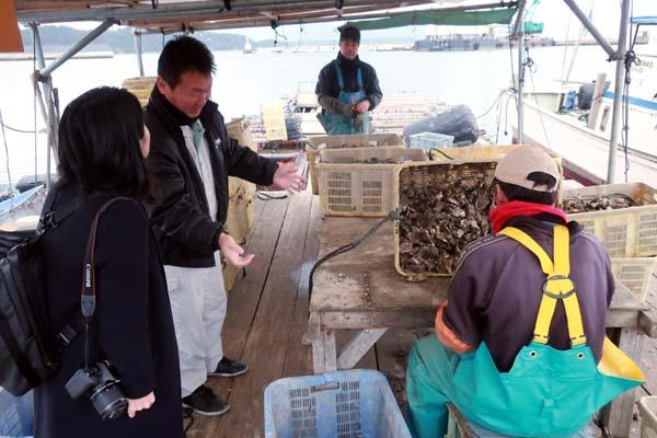 糸島カキの選別作業