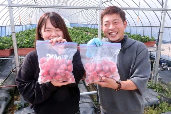 Uターン&Iターンで福岡へ。新規就農であまおういちごを栽培する彩果農園の油小路ご夫妻
